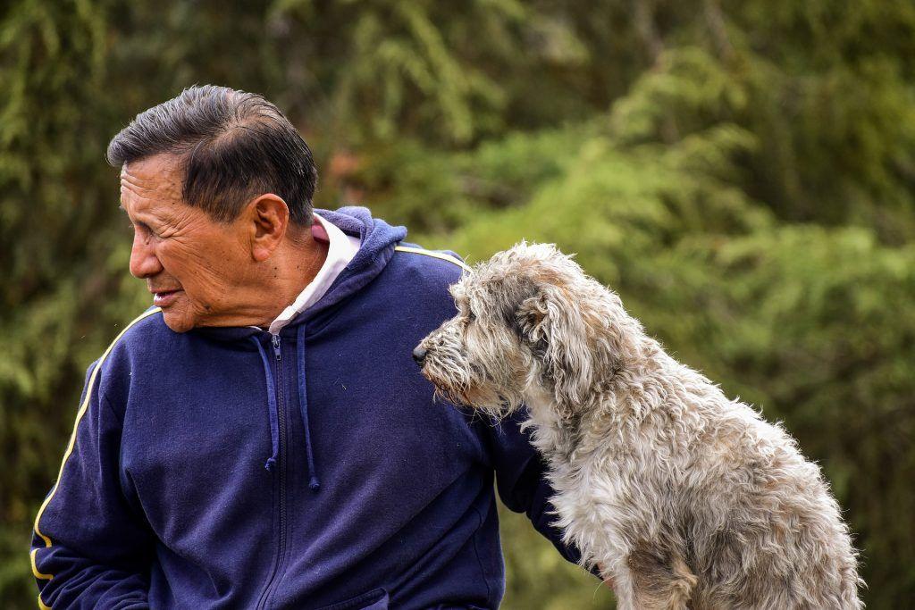 perro al lado de su dueño. 50 formas en las que los perros se comunican contigo