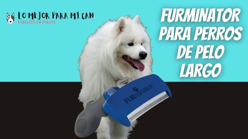 Cepillo deslanador FURminator para perros pequeños, medianos y grandes de pelo largo